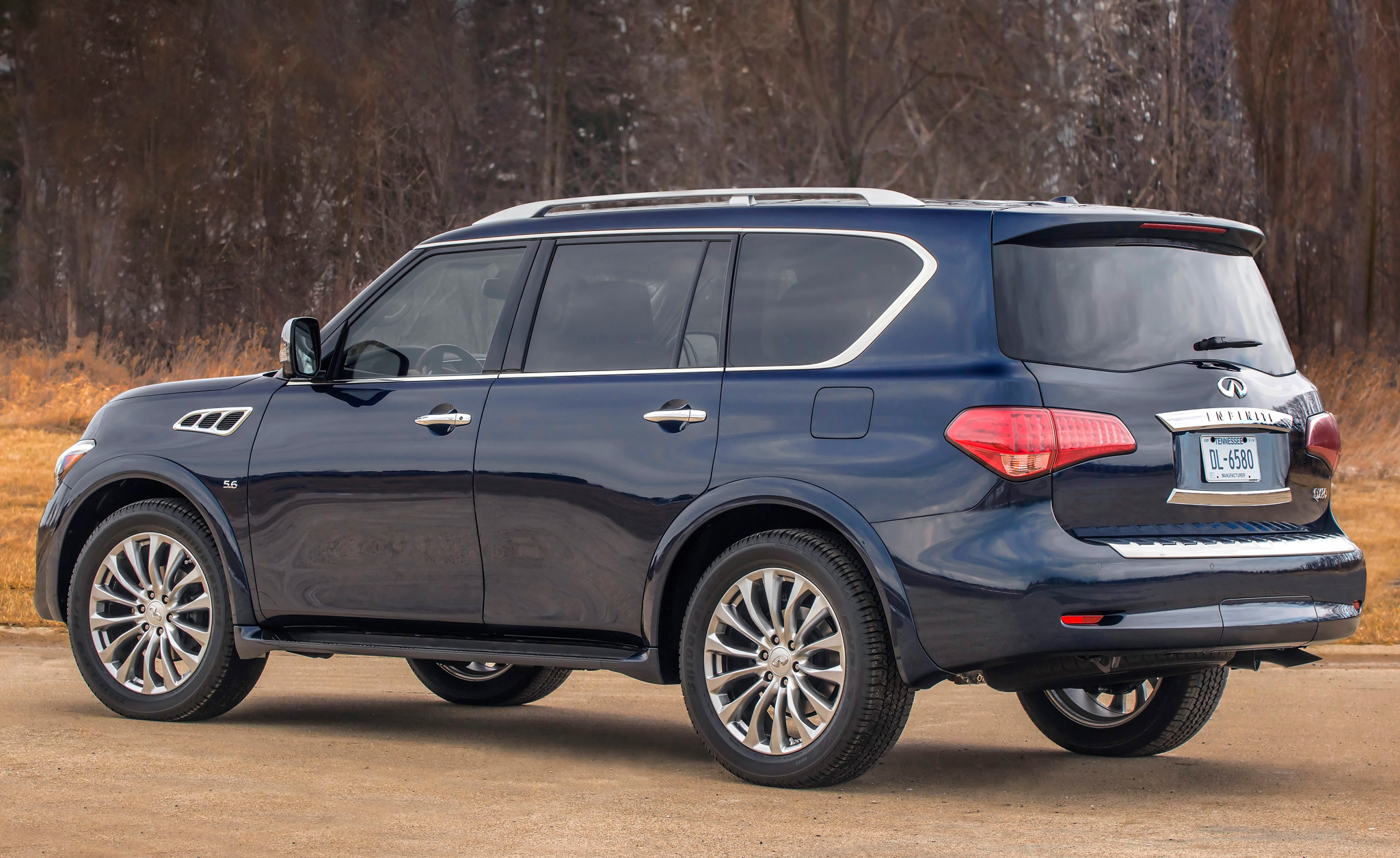 2015-Infiniti-QX80-rear-side-view.jpg